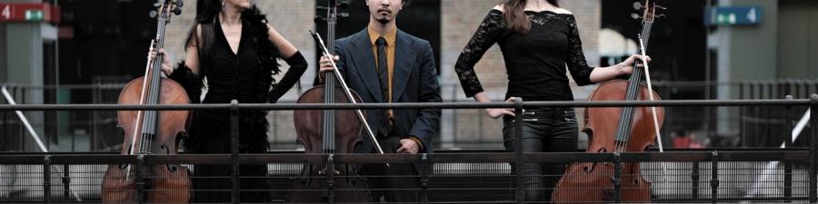 Artiste Violoncelliste